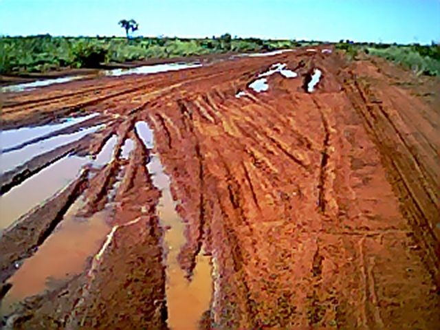 The Tanami Track in the wet season